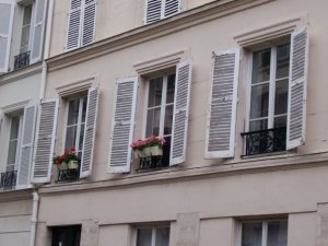 Paris window box